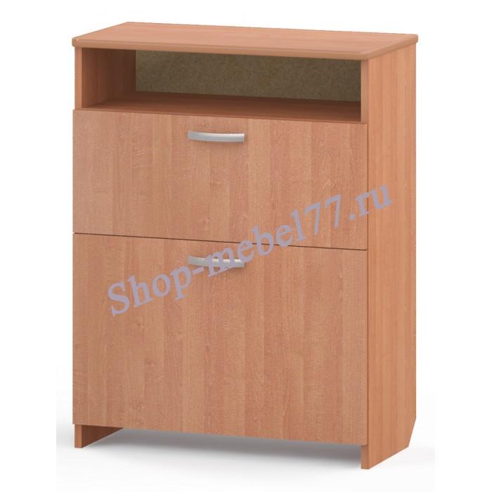 Шкаф для обуви ТО-02