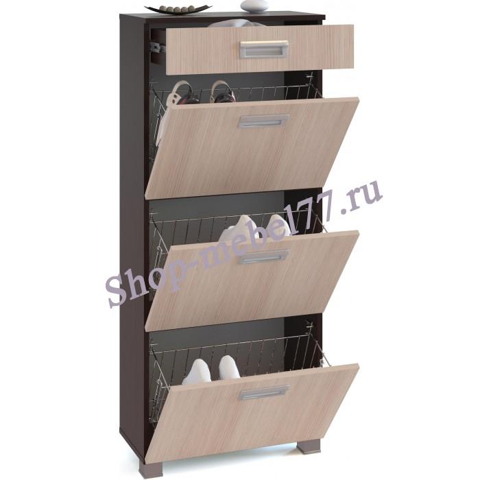 Шкаф под обувь ТО-3М